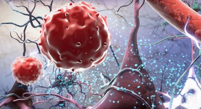 показатели иммуноглобулина