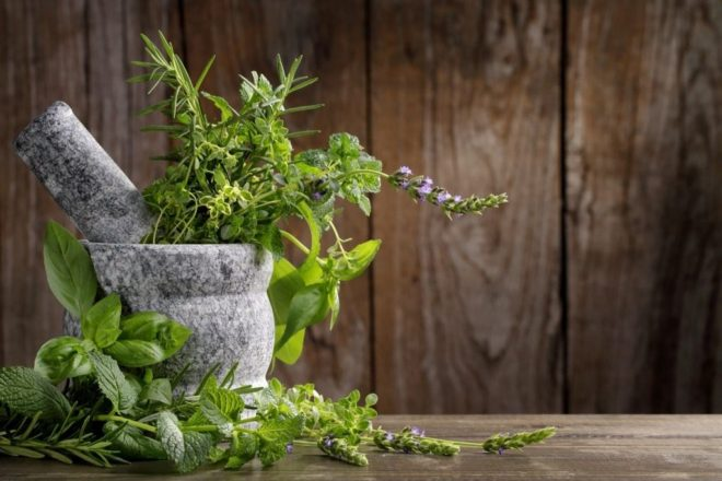 Какие травы полезны для печени