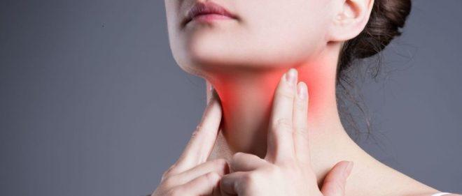 щитовидка у человека