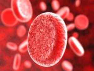 Причины повышенного общего белка в крови и что это означает