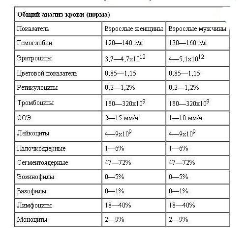 нрома общего анализа крови