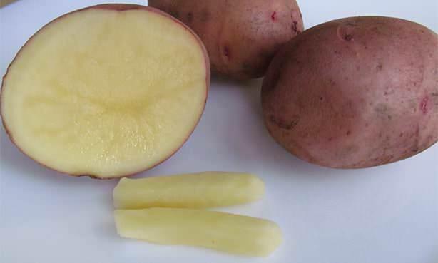Картофельная свеча