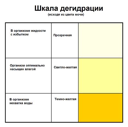 Общий анализ мочи прозрачность