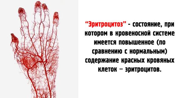 Норма эритроцитов в анализах крови