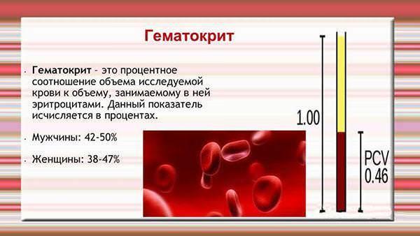 Гематокрит понижен - что делать?