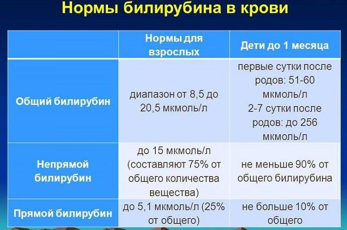 таблица норма билирубина