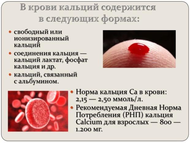 кальций в крови