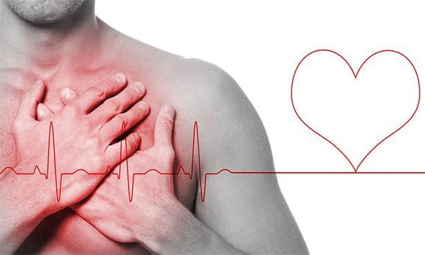Сердце, пульс, давление